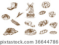 bakery vector illustration 36644786