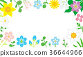 flower, flowers, wild flower 36644966