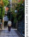 교토 돌 담 골목을 걷는 여성 36645160