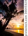 guam, blue water, marine 36645929