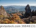 Mount Myōgi, autumn, autumnal 36646131