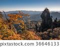 Mount Myōgi, autumn, autumnal 36646133