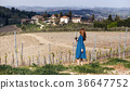 girl and a typical Tuscan landscape 36647752