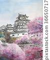 城堡和櫻花姬路城堡櫻桃手寫 36650717