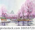 성과 벚꽃 오사카 성 벚꽃 필기 36650720