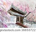 Okayama · Senkoji Sakura 36650722