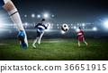 soccer, foot, goal 36651915