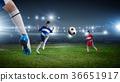 soccer, foot, goal 36651917