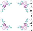 矢量圖 玫瑰 玫瑰花 36652354