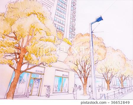 Tokyo cityscape landscape 36652849