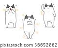 vector, vectors, illustration 36652862