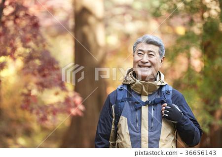 男人,韓國人,生活 36656143