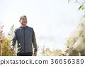 남자,한국인,생활 36656389