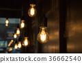 Light bulb 36662540