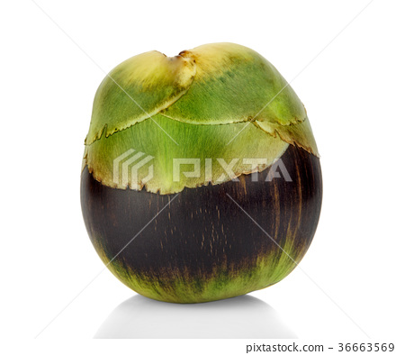 Asian Palmyra palm, fruit on white background. 36663569