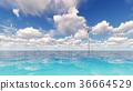 electric,electricity,sea 36664529