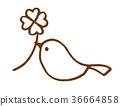 작은 새와 클로버 36664858