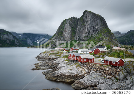 Traditional red rorbu cottages in Hamnoy village 36668276