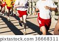 High school boys racing cross country over bridge 36668311