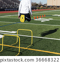 Jumping over yellow mini hurdles on a sunny day 36668322