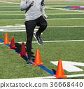 Running speed drills over orange cones on turf 36668440