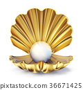 golden pearl 36671425