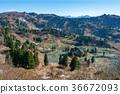 yamakoshi, scenery, terraced rice-fields 36672093