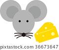 老鼠 奶酪 芝士 36673647