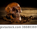 Horror skull with old chain on old wooden floor  36680369