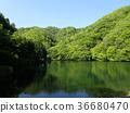 ทะเลสาบ 36680470