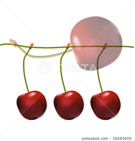 Red juicy cherries on stem fruit dessert Cherry 36684600