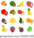 水果 向量 向量圖 36690168