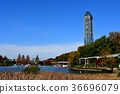 푸른 하늘, 풍경, 가을 36696079
