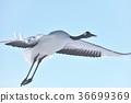 日本吊車 鶴 起重機 36699369