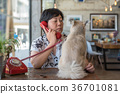 Asian women and dog in coffee shop cafe with phone 36701081