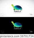 turtle, vector, sea 36701734