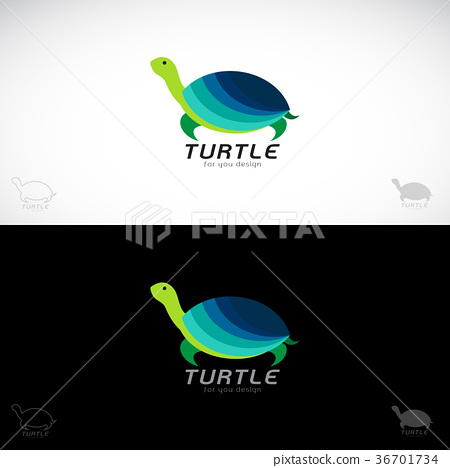 Vector of turtle design. 36701734