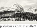 springboard, Solisko, Slovakia 36704671