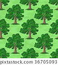 Oak Trees Seamless 36705093