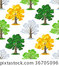 Oak Trees Seamless 36705096