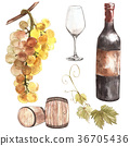 wine bottle watercolor 36705436