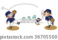 baseball, baseballs, baby 36705500