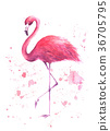 flamingo, watercolor, pink 36705795