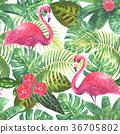 tropical, pattern, flower 36705802