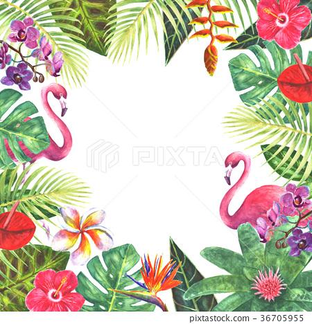 Pink flamingo tropical plants frame 36705955