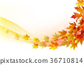 Autumn leaves maple and with papper background 36710814
