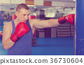 Man is training with punching bag in box gym 36730604
