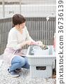 家务洗儿童鞋 36736139