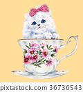 动物 猫 猫咪 36736543