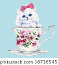 动物 猫 猫咪 36736545